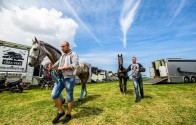 Knokke Hippique publiceert eerste foto's van hun veelbelovende evenement
