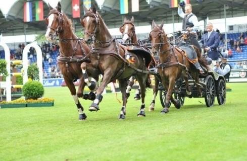 Glenn Geerts voorbij wereldkampioen en Nederlandse concurrenten naar winst in Aachen