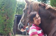 De 10 meest gestelde vragen over chiropraxie bij paarden? Chiropractor Ilse Vangeel geeft antwoord!
