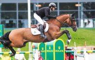 3 nouveaux chevaux pour Eric Lamaze